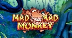 Mad Mad Monkey ny spelautomat