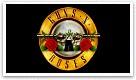 Spela gratis Guns n roses video slot