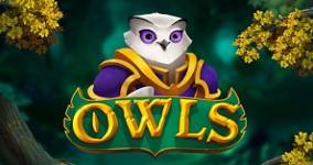 Nya spelautomaten Owls