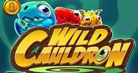 Nya spelautomaten Wild Cauldron
